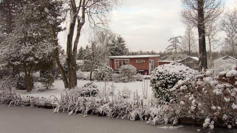 nle-winter-2009-111_0